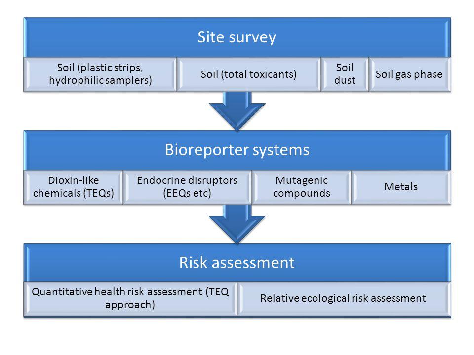 Relative ecological risk assessment .
