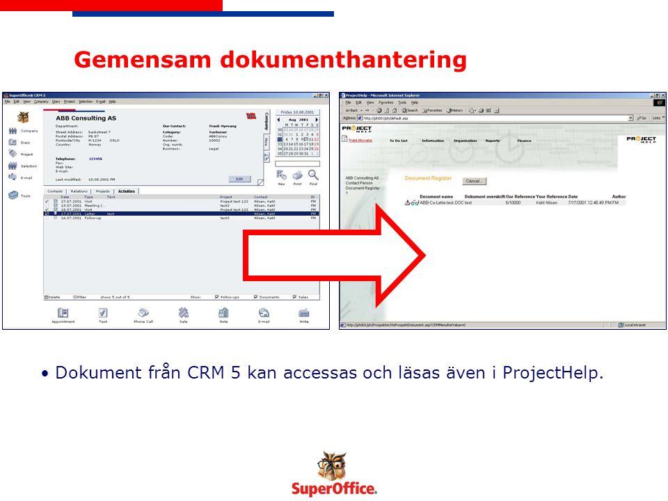 Projektinformation Projekt skapas normalt i ProjectHelp med hjälp av en Wizard .