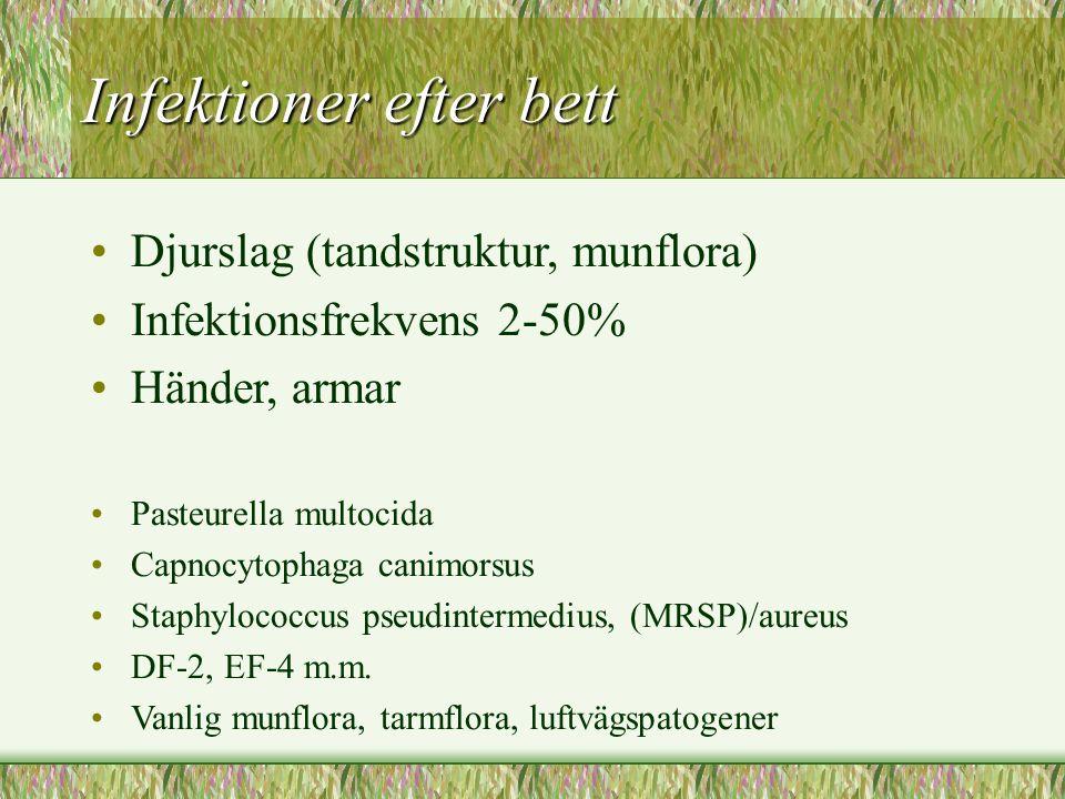 Infektioner efter bett Djurslag (tandstruktur, munflora) Infektionsfrekvens 2-50% Händer, armar Pasteurella multocida Capnocytophaga canimorsus Staphy