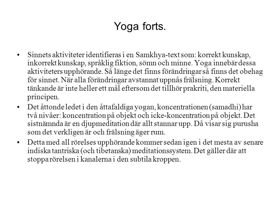 Yoga forts. Sinnets aktiviteter identifieras i en Samkhya-text som: korrekt kunskap, inkorrekt kunskap, språklig fiktion, sömn och minne. Yoga innebär