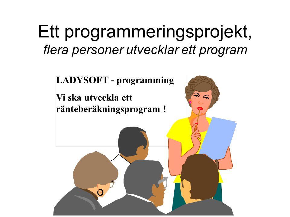 Ett programmeringsprojekt, flera personer utvecklar ett program LADYSOFT - programming Vi ska utveckla ett ränteberäkningsprogram !