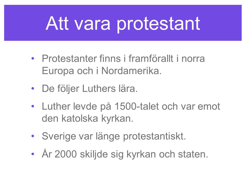 Att vara protestant Protestanter finns i framförallt i norra Europa och i Nordamerika. De följer Luthers lära. Luther levde på 1500-talet och var emot