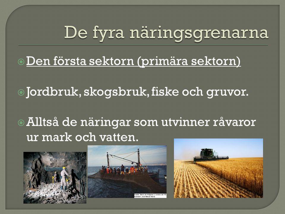  Den första sektorn (primära sektorn)  Jordbruk, skogsbruk, fiske och gruvor.  Alltså de näringar som utvinner råvaror ur mark och vatten.