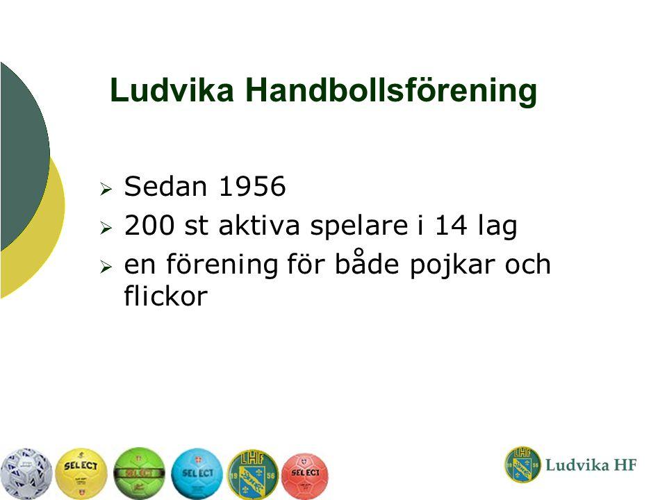  Sedan 1956  200 st aktiva spelare i 14 lag  en förening för både pojkar och flickor Ludvika Handbollsförening