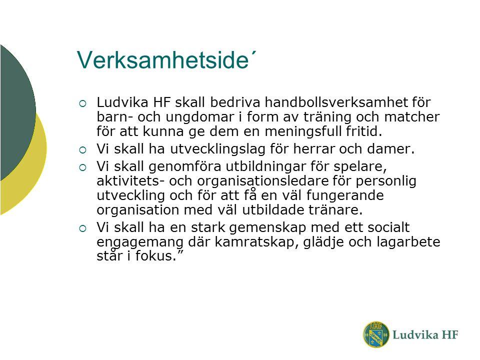 Verksamhetside´  Ludvika HF skall bedriva handbollsverksamhet för barn- och ungdomar i form av träning och matcher för att kunna ge dem en meningsful
