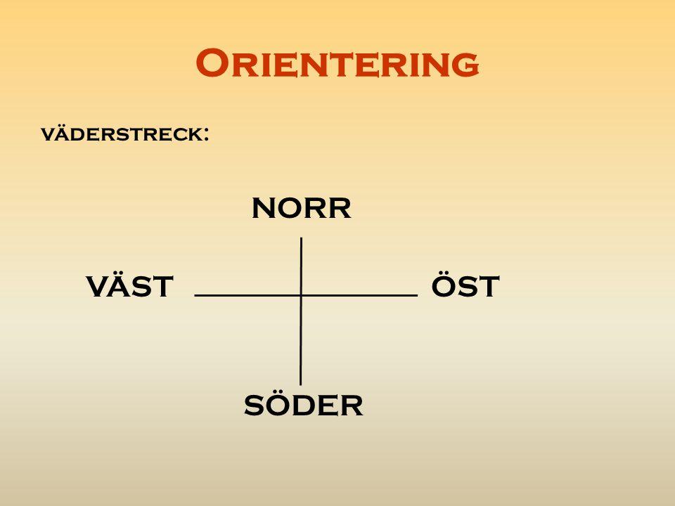Orientering Tydliga ledstänger är exempelvis Vägar elledningar/kraftledningar stigar Passa kartan= det som du har framför dig på kartan ska du ha framför dig i verkligheten.