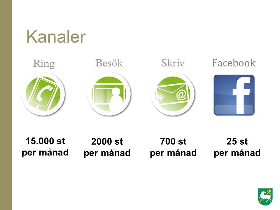Kanaler 15.000 st per månad 2000 st per månad 700 st per månad 25 st per månad Facebook