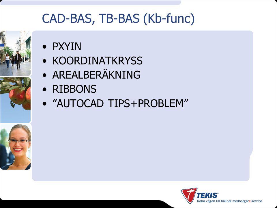 "CAD-BAS, TB-BAS (Kb-func) PXYIN KOORDINATKRYSS AREALBERÄKNING RIBBONS ""AUTOCAD TIPS+PROBLEM"""