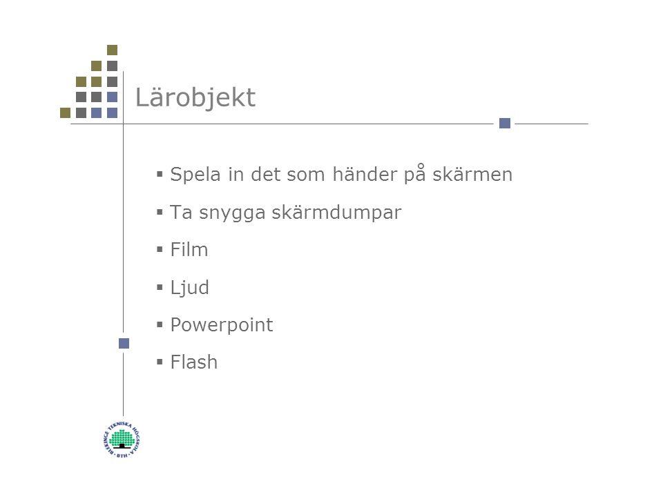 Lärobjekt  Spela in det som händer på skärmen  Ta snygga skärmdumpar  Film  Ljud  Powerpoint  Flash