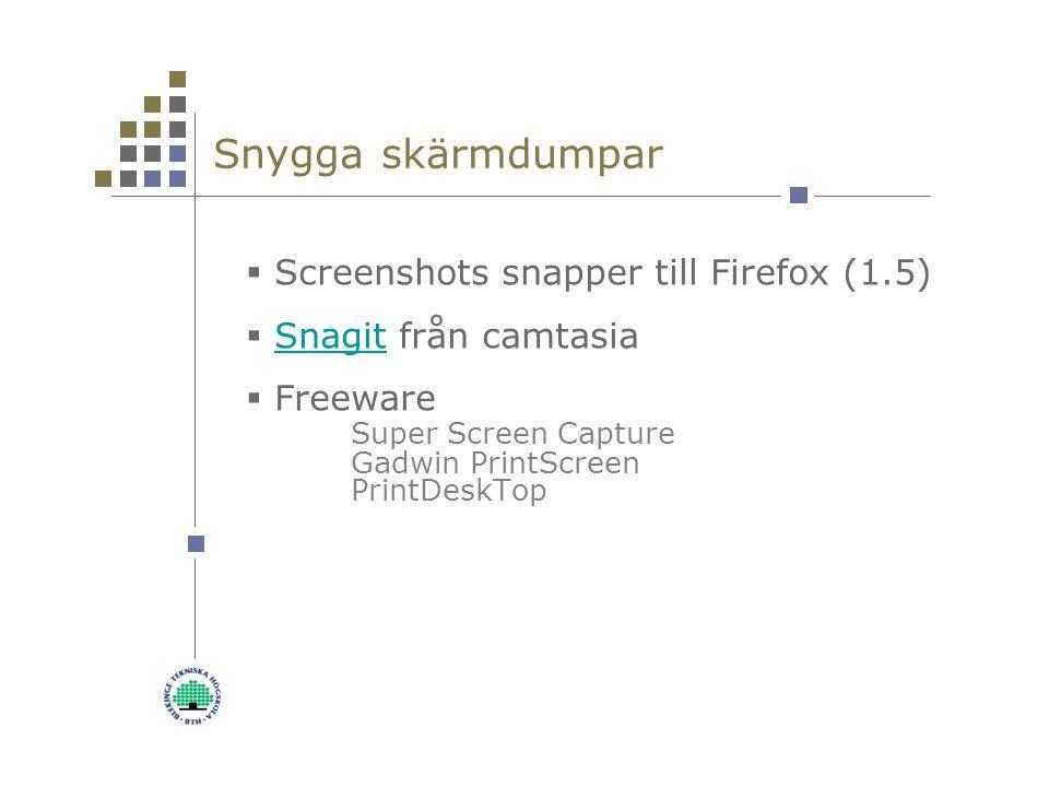 Snygga skärmdumpar  Screenshots snapper till Firefox (1.5)  Snagit från camtasiaSnagit  Freeware Super Screen Capture Gadwin PrintScreen PrintDeskTop