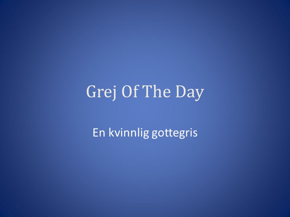 Grej Of The Day En kvinnlig gottegris
