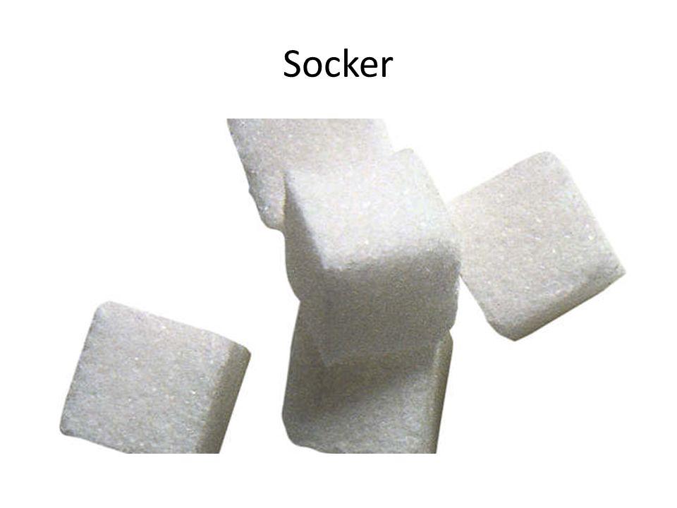 Socker kommer från sockerrör, som finns i Indien.