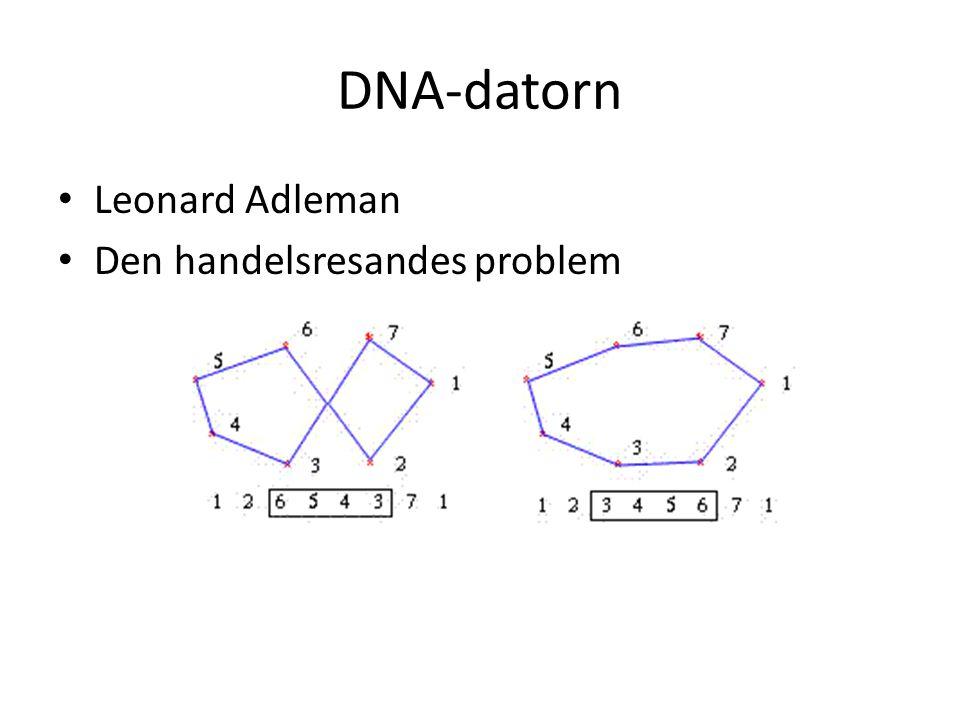 DNA-datorn Leonard Adleman Den handelsresandes problem