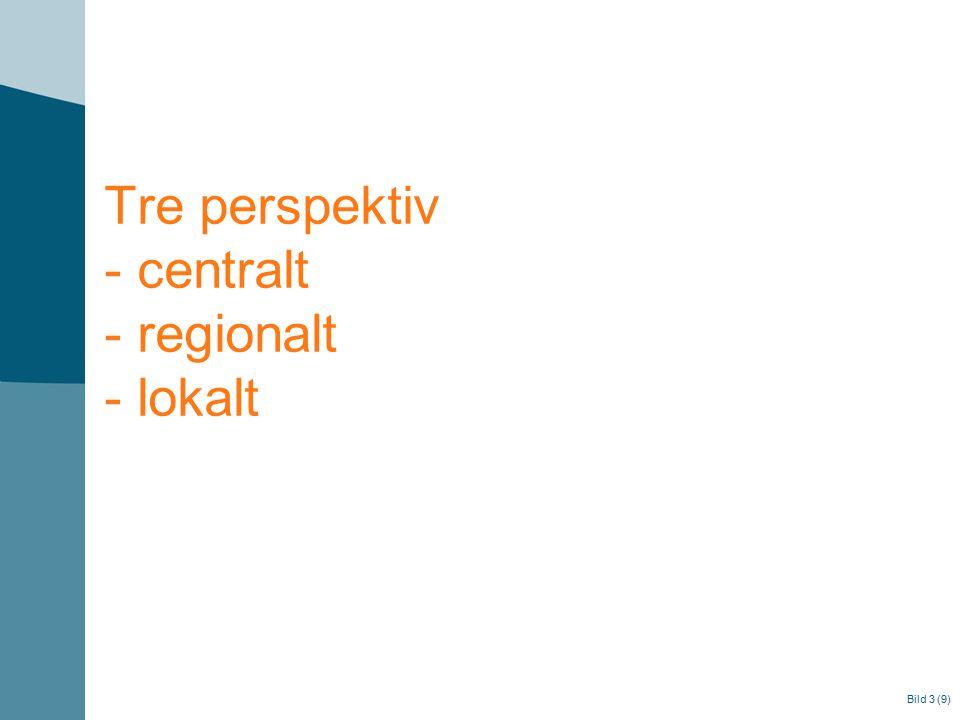 Tre perspektiv - centralt - regionalt - lokalt Bild 3 (9)