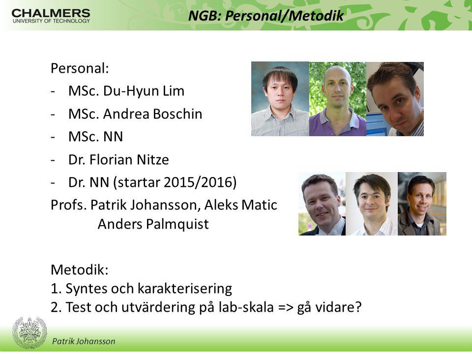 Patrik Johansson NGB: Personal/Metodik Personal: -MSc. Du-Hyun Lim -MSc. Andrea Boschin -MSc. NN -Dr. Florian Nitze -Dr. NN (startar 2015/2016) Profs.