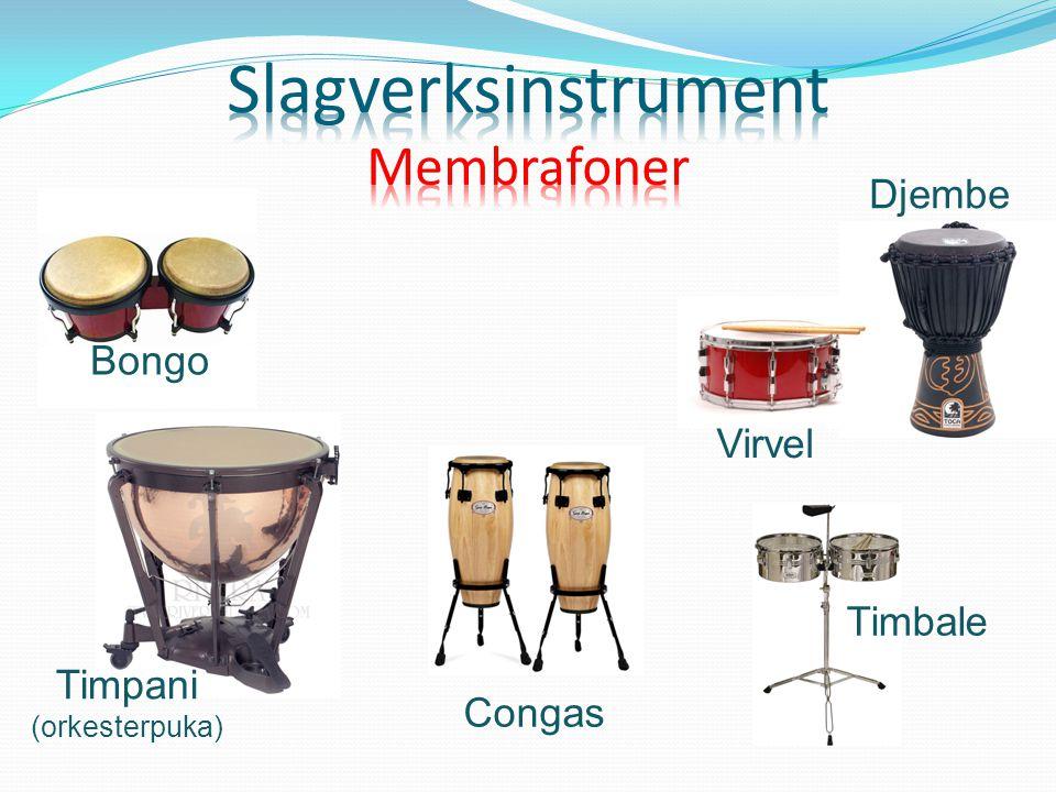 Timpani (orkesterpuka) Bongo Congas Timbale Djembe Virvel