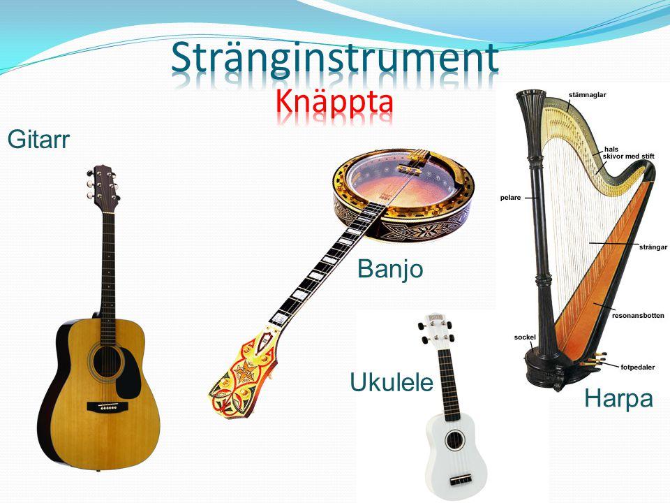 Gitarr Banjo Ukulele Harpa