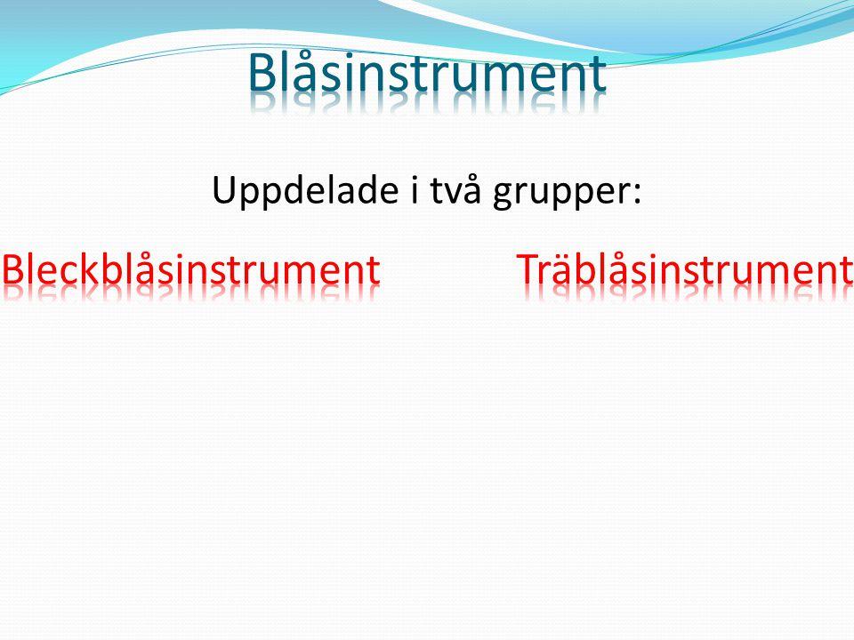 Valthorn Trumpet Trombon Althorn Bastuba
