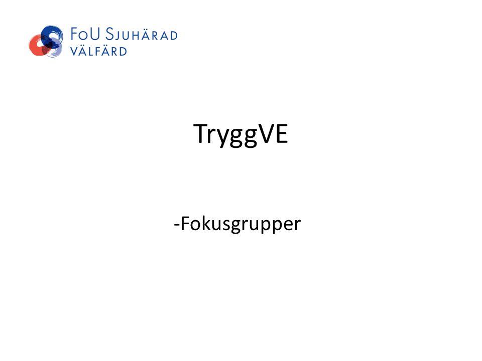 TryggVE -Fokusgrupper