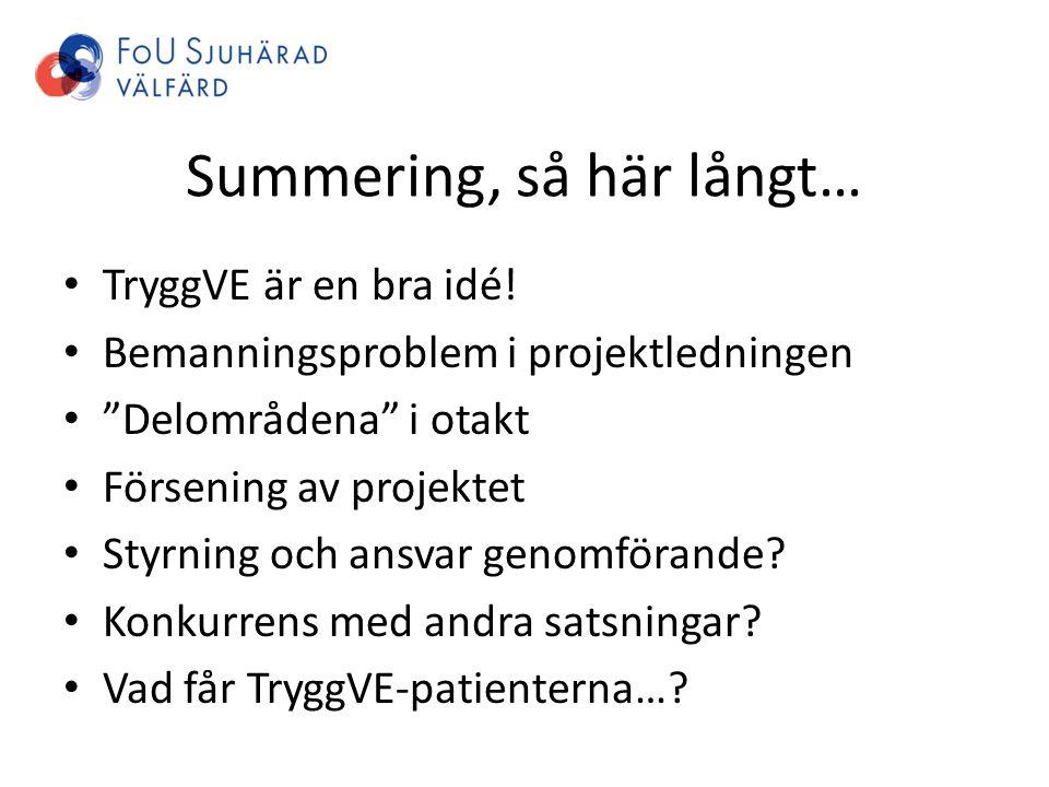 """Summering, så här långt… TryggVE är en bra idé! Bemanningsproblem i projektledningen """"Delområdena"""" i otakt Försening av projektet Styrning och ansvar"""