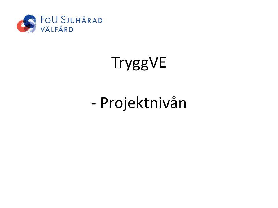 TryggVE - Projektnivån