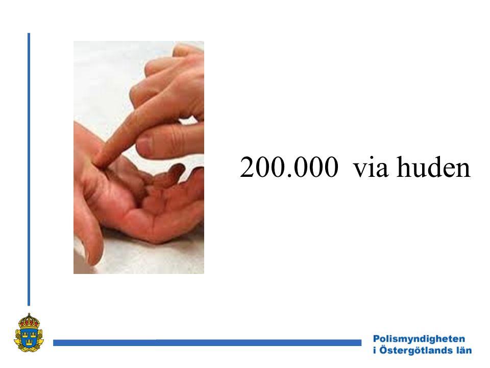 200.000 via huden