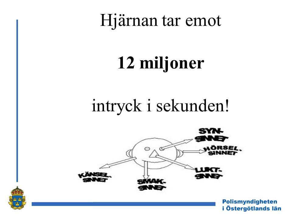 Hjärnan tar emot 12 miljoner intryck i sekunden!