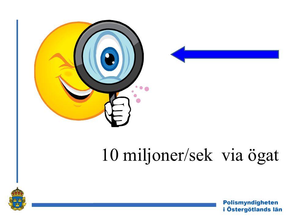 10 miljoner/sek via ögat