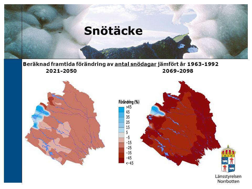 Några av Länsstyrelsens insatser Utredning Risk- och sårbarhet för dricksvatten Utveckling stabilitetskartering Klimatanalys för Norrbottens län (SMHI) Översiktlig klimat- och sårbarhetsanalys – Norrbotten (SGI) Yttranden planärenden