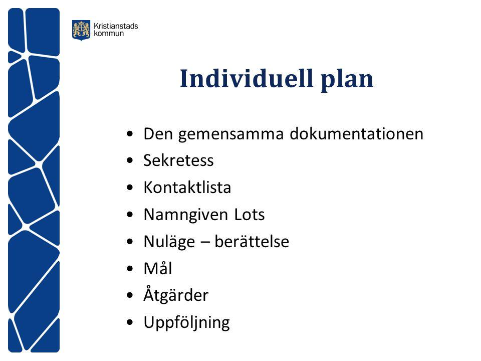 Individuell plan Den gemensamma dokumentationen Sekretess Kontaktlista Namngiven Lots Nuläge – berättelse Mål Åtgärder Uppföljning
