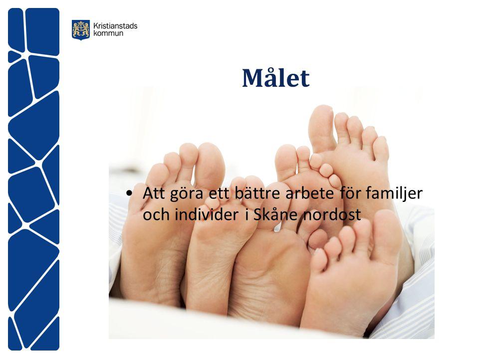 Målet Att göra ett bättre arbete för familjer och individer i Skåne nordost