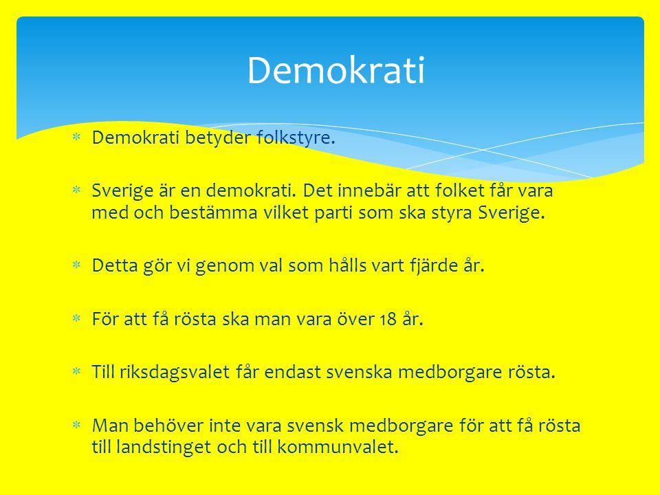  Det finns flera saker som kännetecknar en demokrati.