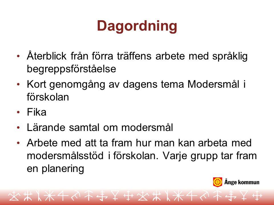 Dagordning Återblick från förra träffens arbete med språklig begreppsförståelse Kort genomgång av dagens tema Modersmål i förskolan Fika Lärande samta
