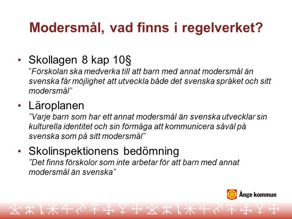 """Modersmål, vad finns i regelverket? Skollagen 8 kap 10§ """"Förskolan ska medverka till att barn med annat modersmål än svenska får möjlighet att utveckl"""