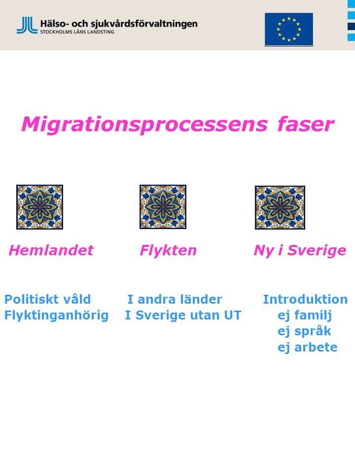 Migrationsprocessens faser Hemlandet Flykten Ny i Sverige Politiskt våld I andra länder Introduktion Flyktinganhörig I Sverige utan UT ej familj ej språk ej arbete