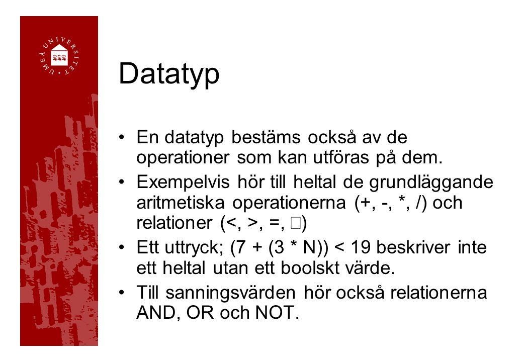 Datatyp En datatyp bestäms också av de operationer som kan utföras på dem. Exempelvis hör till heltal de grundläggande aritmetiska operationerna (+, -