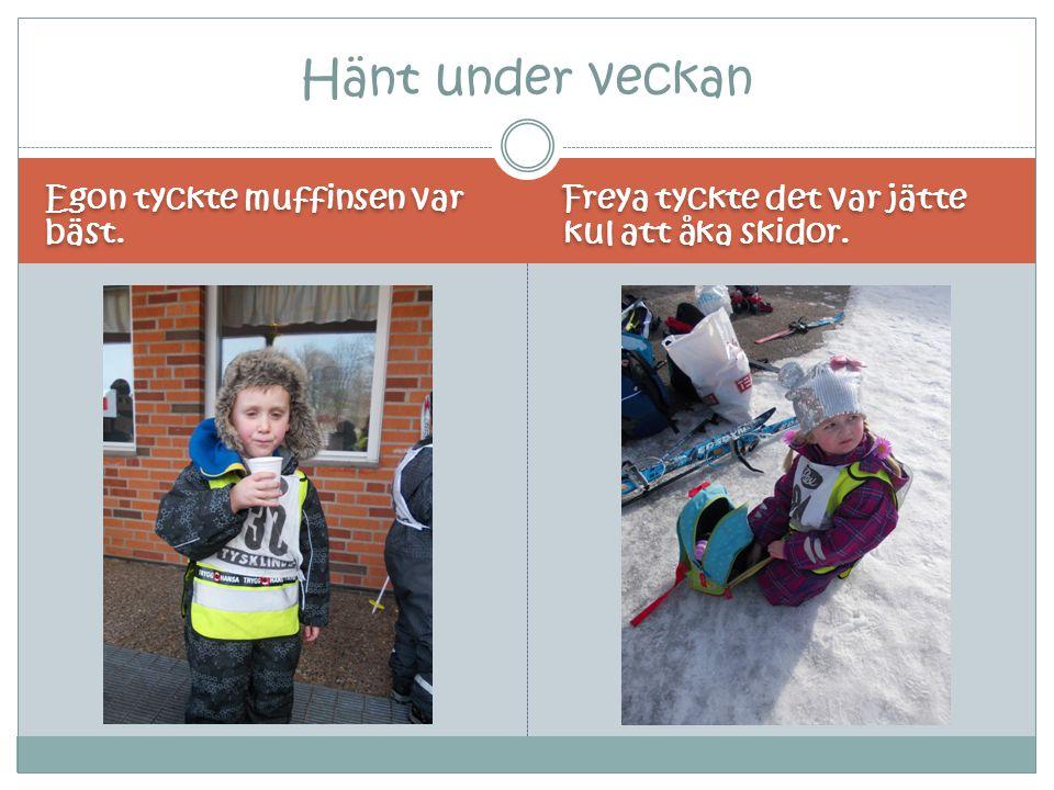 Egon tyckte muffinsen var bäst. Freya tyckte det var jätte kul att åka skidor. Hänt under veckan