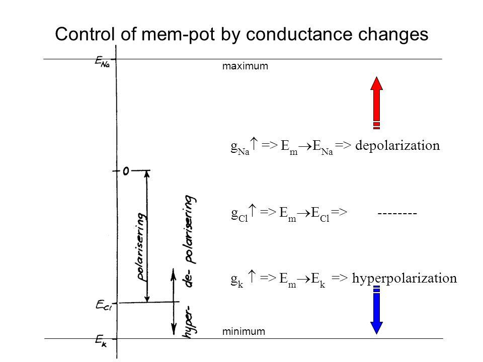 Control of mem-pot by conductance changes g k  => E m  E k => hyperpolarization g Na  => E m  E Na => depolarization g Cl  => E m  E Cl => -------- maximum minimum