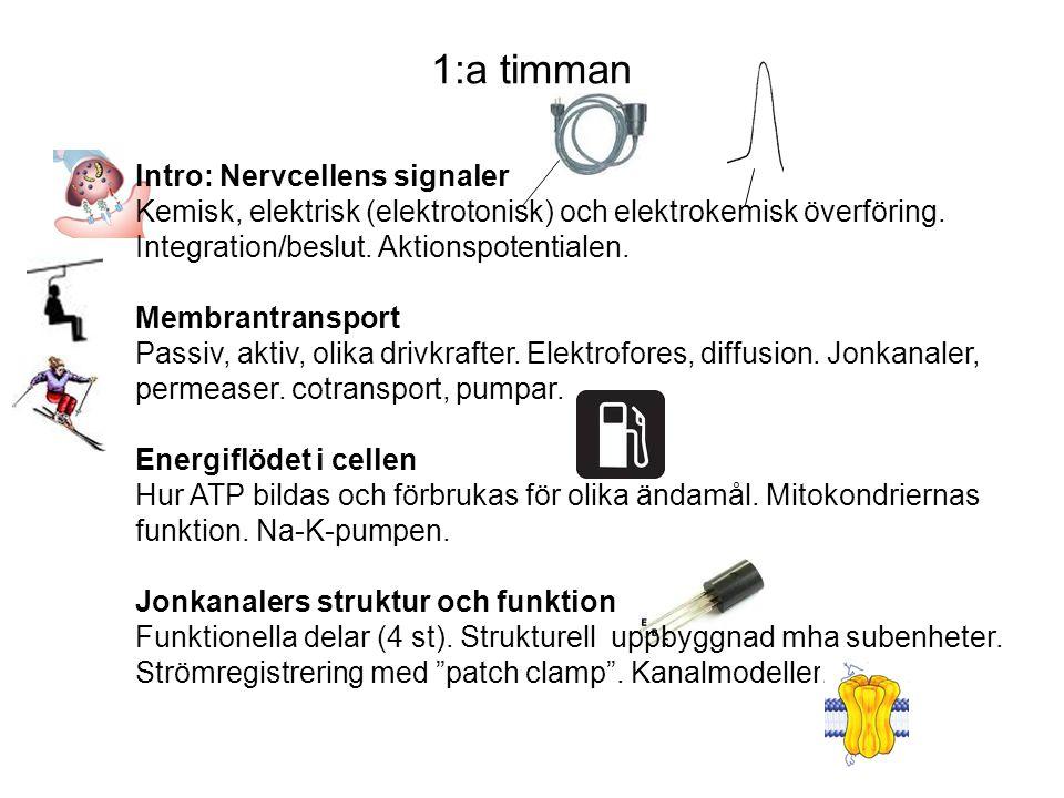 Intro: Nervcellens signaler Kemisk, elektrisk (elektrotonisk) och elektrokemisk överföring.