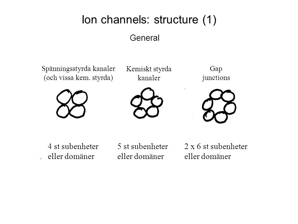 Ion channels: structure (2) Acetyl choline receptor/channel