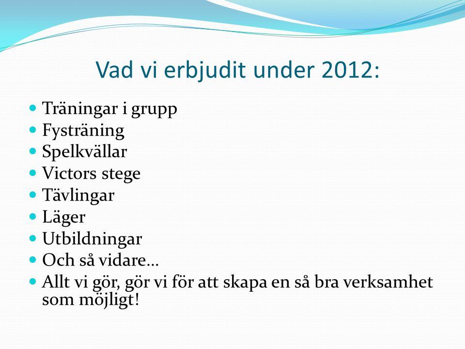 Vad vi erbjudit under 2012: Träningar i grupp Fysträning Spelkvällar Victors stege Tävlingar Läger Utbildningar Och så vidare… Allt vi gör, gör vi för att skapa en så bra verksamhet som möjligt!