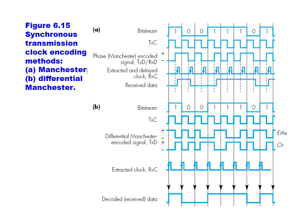 Figure 6.15 Synchronous transmission clock encoding methods: (a) Manchester; (b) differential Manchester.