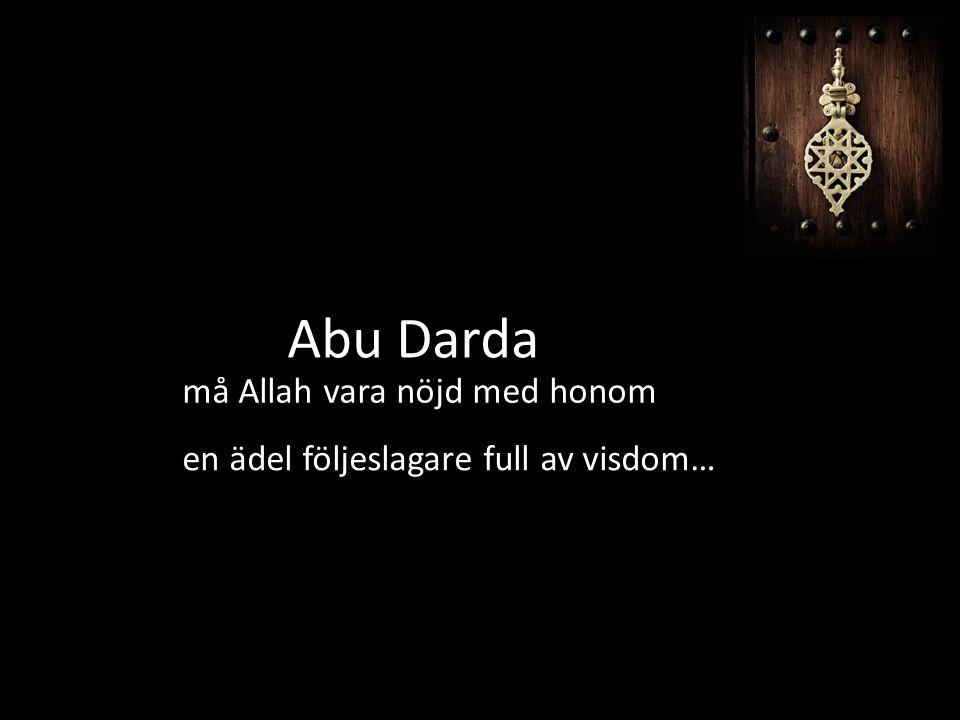 Abu Darda må Allah vara nöjd med honom en ädel följeslagare full av visdom…