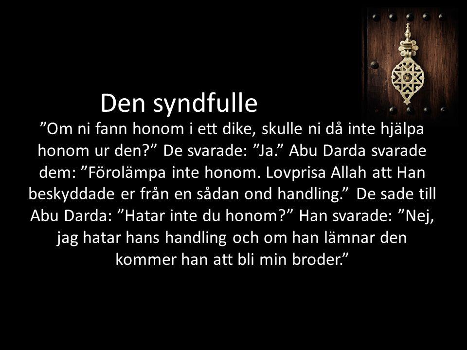 Om ni fann honom i ett dike, skulle ni då inte hjälpa honom ur den De svarade: Ja. Abu Darda svarade dem: Förolämpa inte honom.