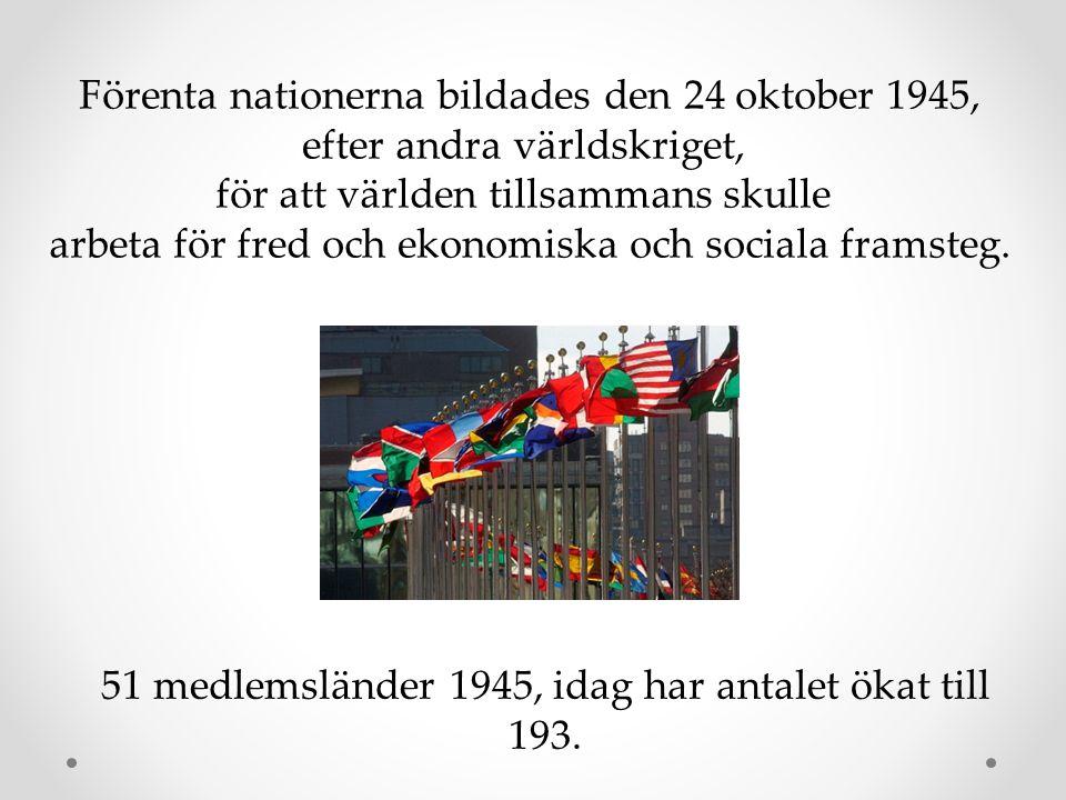 Förenta nationerna bildades den 24 oktober 1945, efter andra världskriget, för att världen tillsammans skulle arbeta för fred och ekonomiska och socia