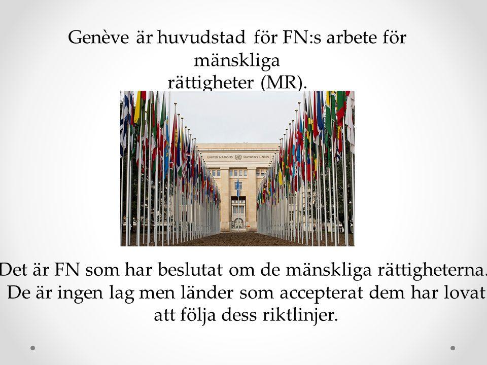 Genève är huvudstad för FN:s arbete för mänskliga rättigheter (MR). Det är FN som har beslutat om de mänskliga rättigheterna. De är ingen lag men länd