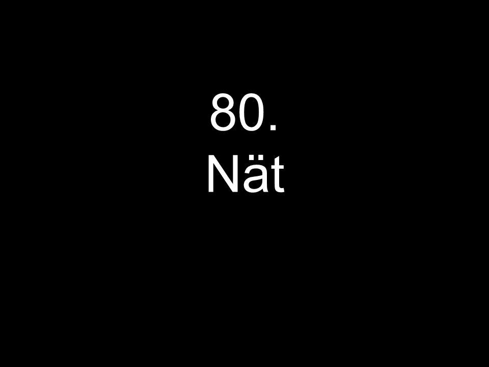 80. Nät