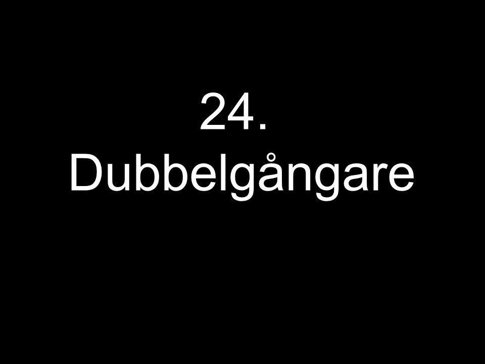 24. Dubbelgångare