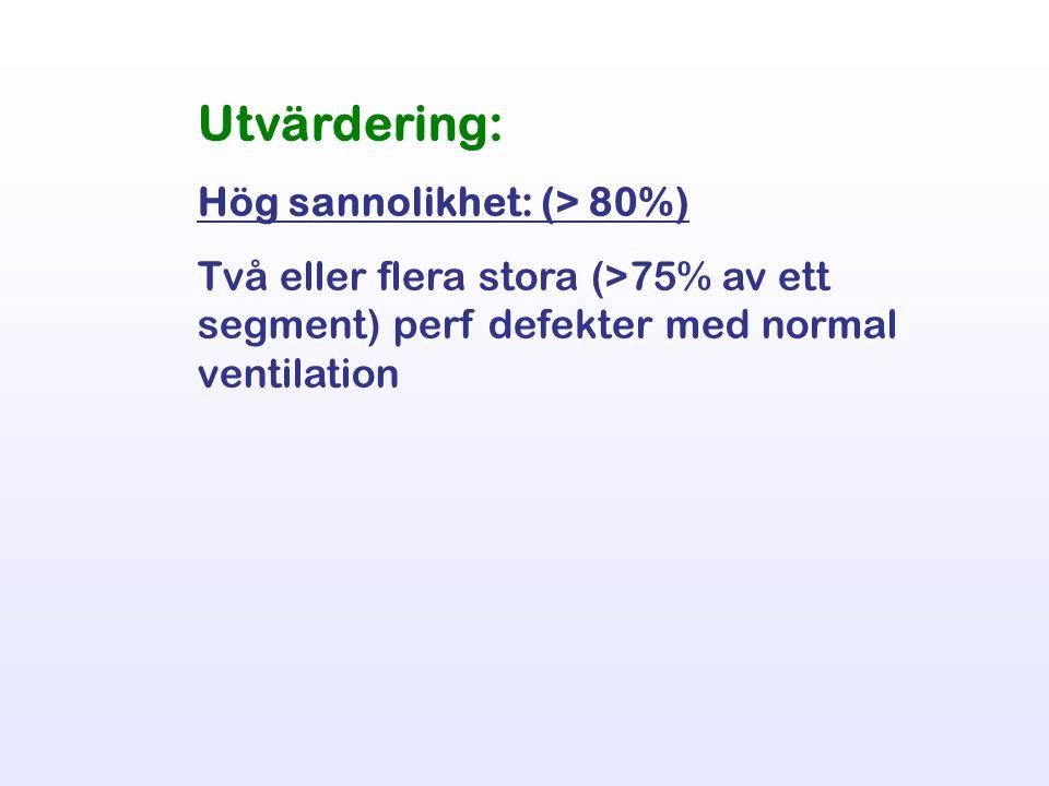 Utvärdering: Hög sannolikhet: (> 80%) Två eller flera stora (>75% av ett segment) perf defekter med normal ventilation