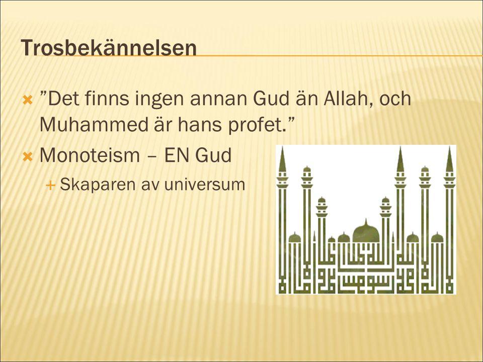 """Trosbekännelsen  """"Det finns ingen annan Gud än Allah, och Muhammed är hans profet.""""  Monoteism – EN Gud  Skaparen av universum"""